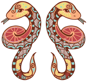 близнецы3