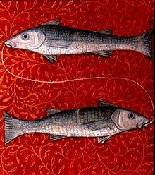 рыбы2